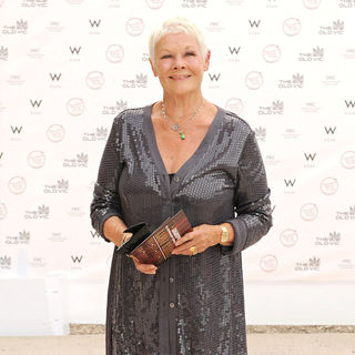 Judi Dench in Summer Fundraising Party for The Old Vic Theatre