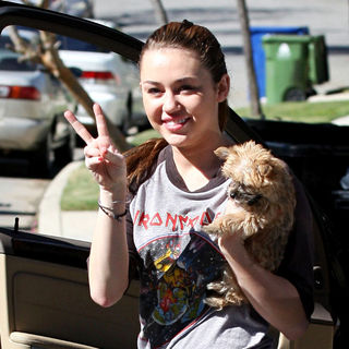 Miley Cyrus - Miley Cyrus Carries Her Dog in Toluca Lake