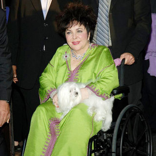 Elizabeth Taylor in Elizabeth Taylor on Her Way to CNN for An Interview with Larry King