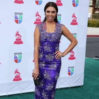 Zoila Ceballos in 13th Annual Latin Grammy Awards - Arrivals